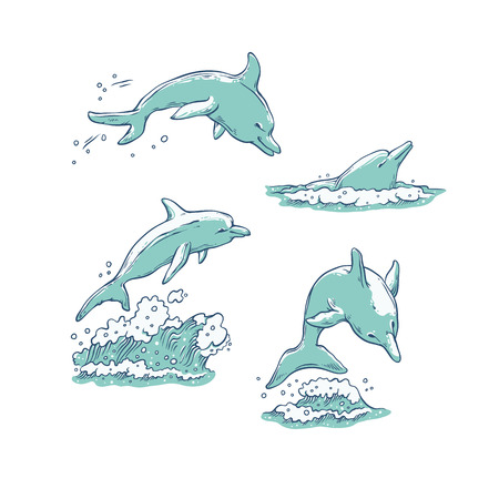 Vector set dolphins jumping dive and swim. Monochrome sketch sea animals isolated on white background for dolphinarium or oceanarium tourist cards or banners design. Stock Illustratie