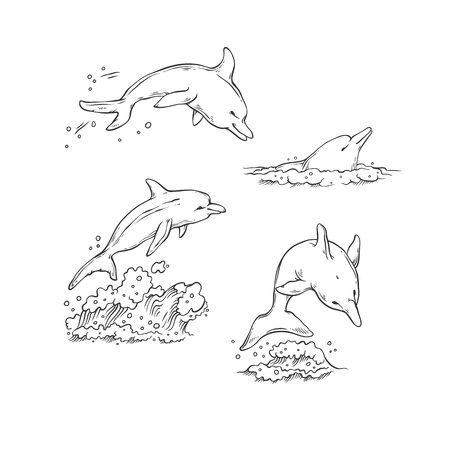 Vector sketch set dolphins jumping dive and swim. Monochrome black sea animals isolated on white background for dolphinarium or oceanarium tourist cards or banners design.
