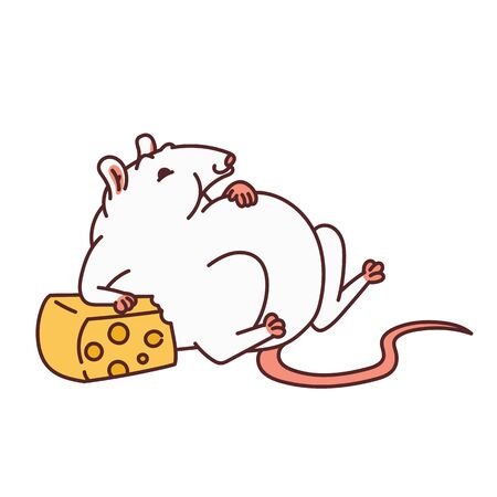 Rat white cute fat mouse too much cheese. Chinese new year symbol outline vector cartoon isolated illustration. Vektoros illusztráció