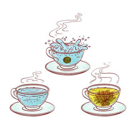 Tea herb flowers brew process make in transparent cup hot drink with leaves. Vector sketch line hand drawn illustration