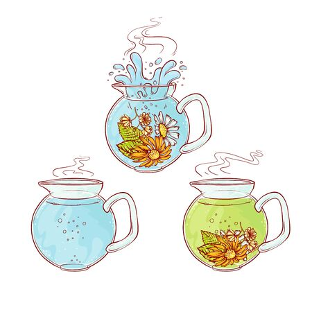 Vector tea herb flowers brew process. Make and pour in transparent teapot hot aromatic drink with blossoming tea leaves. Sketch hand drawn line illustration