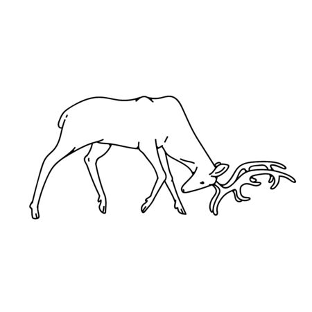 Wild deer male buck with branched horns attack butt view profile vector outline black white sketch illustration.