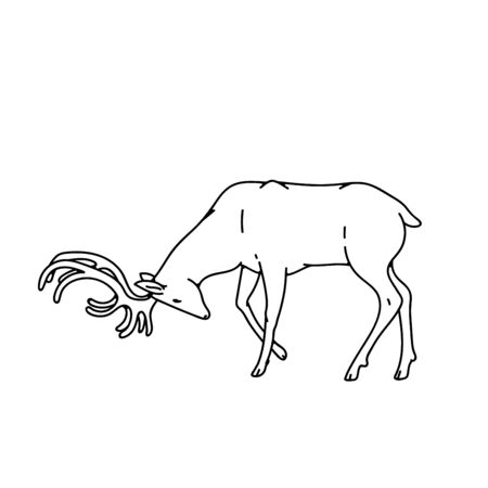 Wild dark deer male buck with branched horns attack butt view profile vector outline black white sketch illustration.