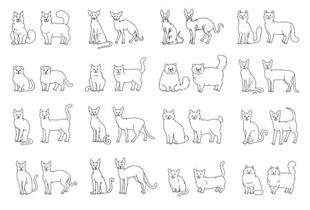 Cat breeds full face and profile. Vector black white pets set contour sketch isolated illustration.  イラスト・ベクター素材