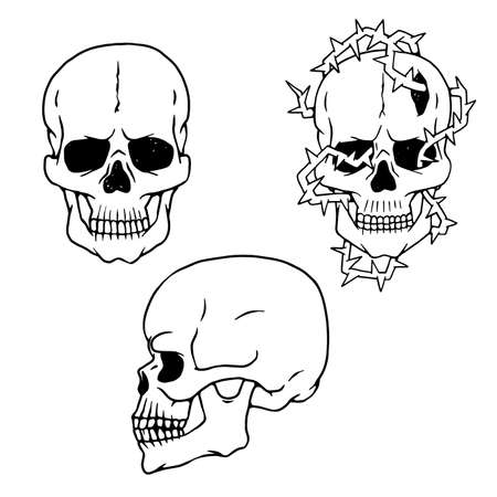 Vector human skulls sketch side and front views isolated illustrations.