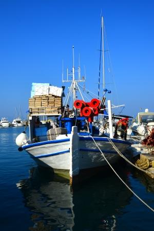 mediterraneo: Fishing in Mediterraneo