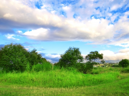 hills land: countryside scenery