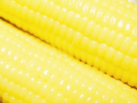 Close up to fresh corn photo