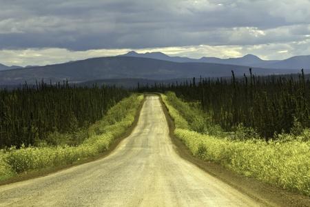 Road to Circolo Polare Artico da Fairbanks Archivio Fotografico