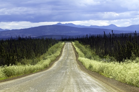 Road from Faibanks to Cold Foot in Alaska photo