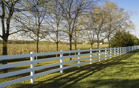 White country fence against field of corn Stock Photo