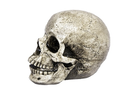 Isolated skull side view photo