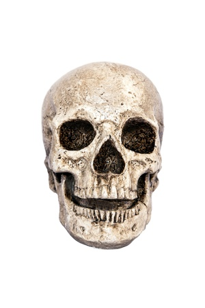 Isolated skull front view photo