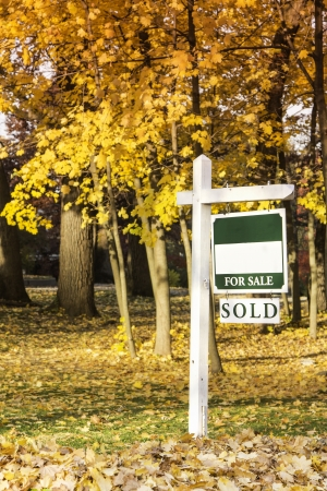 Property for sale sign in autumn scennery photo