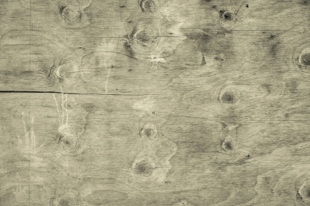 Wooden knotty panel as background photo