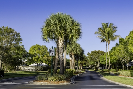 Road to residential community in Naples, Florida Imagens