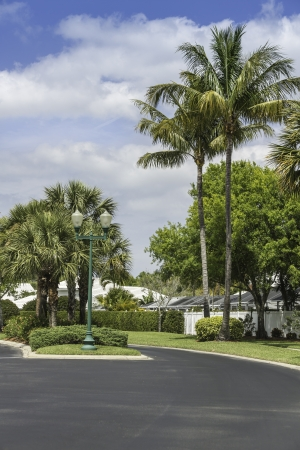 gated: Traditional gated community road in Naples, South Florida