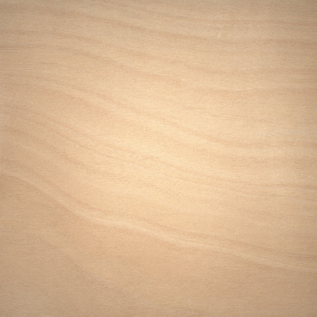 table surface: Sample of grainy wooden veneer Stock Photo