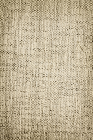 canva: Paint canva surface texture background
