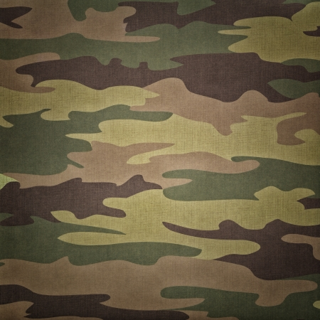 army background: Military camouflage pattern