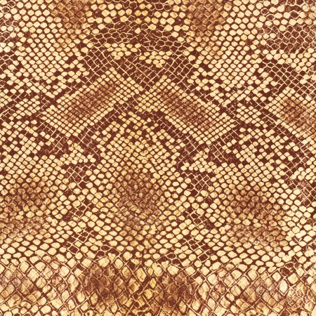 Wild animal body skin pattern photo