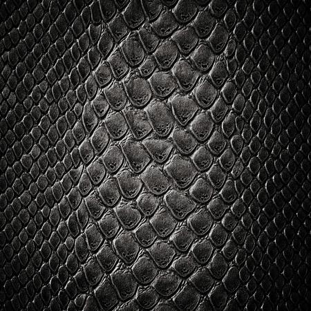 黒ヘビ皮の革の質感