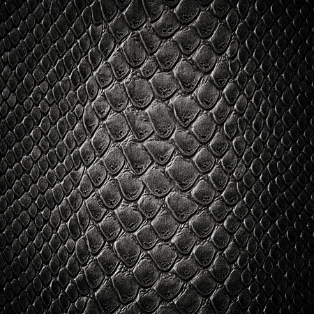 Snake black skin leather texture Foto de archivo