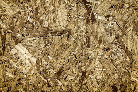 pressed:  Pressed wood texture background