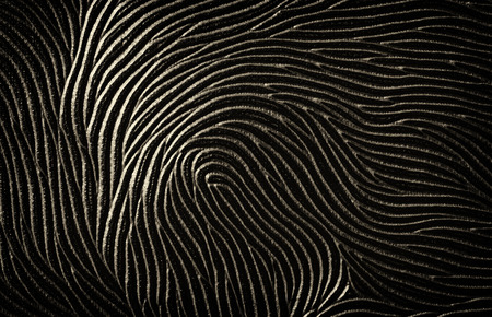 Finger print abstract background