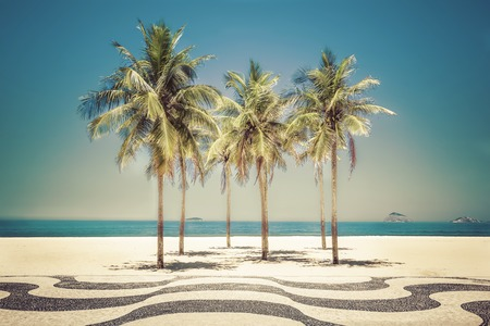 brazil beach: Palms on Copacabana Beach in Rio de Janeiro, Brazil Stock Photo