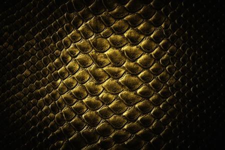Crocodile black skin leather texture photo