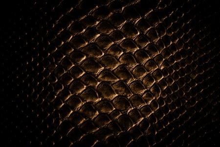 piel morena: Piel del cocodrilo textura de cuero marr�n Foto de archivo