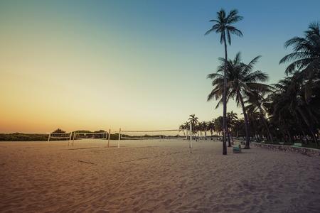 south beach: Miami South Beach park at dusk with palms, Florida