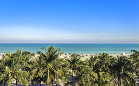 Public beach behind the palm trees in Miami Beach, Florida Stock Photo