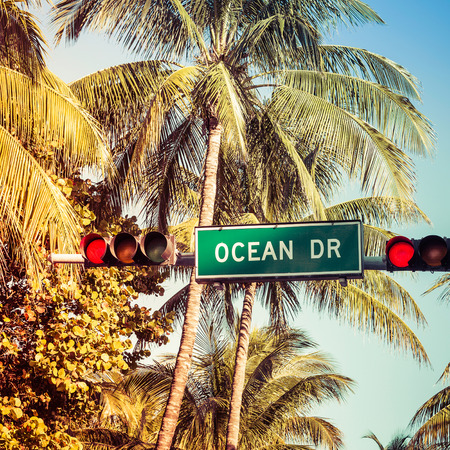 Coconut palm trees and Ocean Drive street sign in Miami Beach, Florida photo