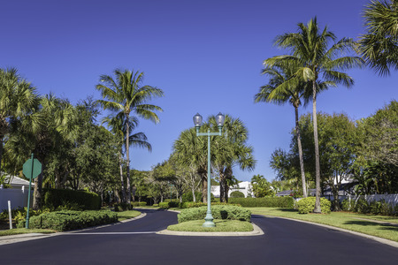 gated: Gated community road in Florida