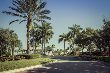 gated: Road to gated community in South Florida