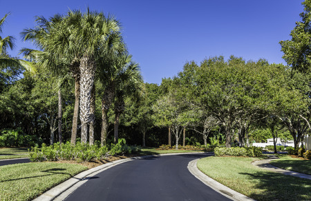 gated: Curvy Gated community road in Florida