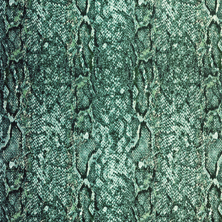 leather skin: Snake leather skin background and texture Stock Photo