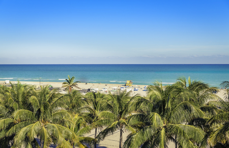 beach panorama: Public beach behind the palm trees in Miami Beach, Florida Stock Photo