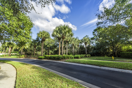 gated: Gated community curvy road in South Florida Stock Photo