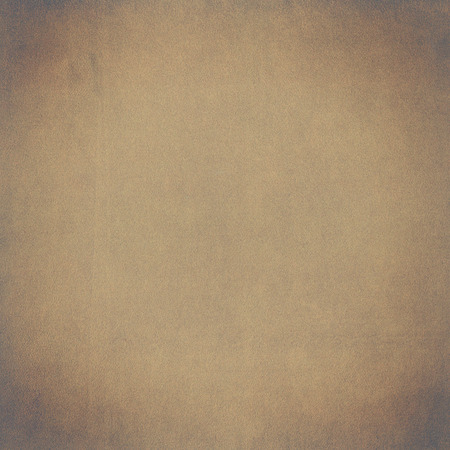 vignette: Leather texture background with vignette