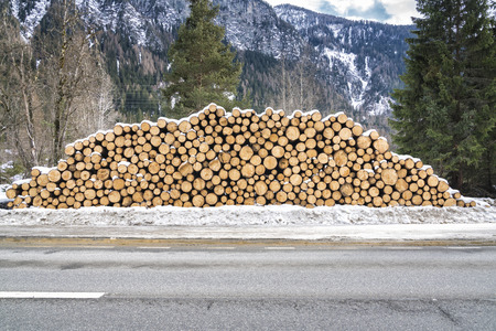 Round Wooden Stacked Piles covered with snow behind the asphalt road