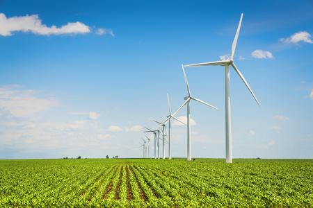 Windmolenpark en platteland maïsveld, landbouwindustrie Stockfoto