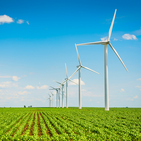 Wind farm in agriculture corn field Stock Photo