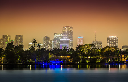 Miami skyline with palms by night.  Illuminated downtown. Vintage colors Stock Photo