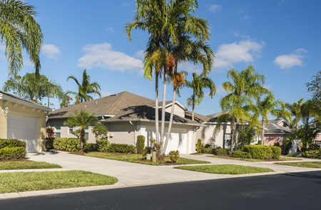 Typical houses with palms in subdivision, South Florida 写真素材