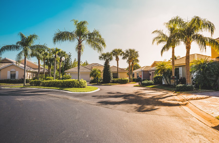 Typical gated community houses with palms, South Florida. Light effect applied 스톡 콘텐츠