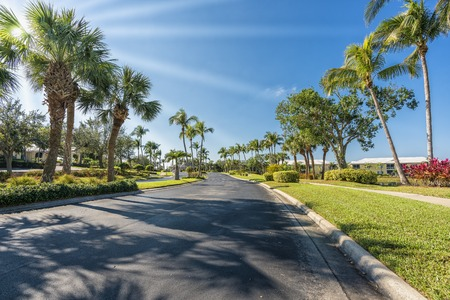 Gated community road with palms, South Florida, United States. Sun rays