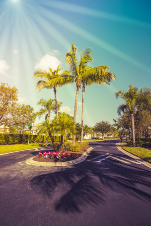 Gated community road with palms, South Florida. Vintage colors with sun rays